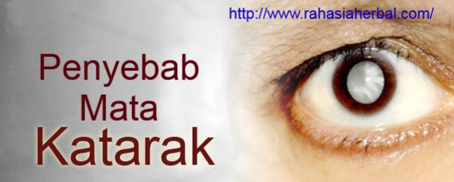 Penyebab Mata Katarak dan Cara Mengobatinya