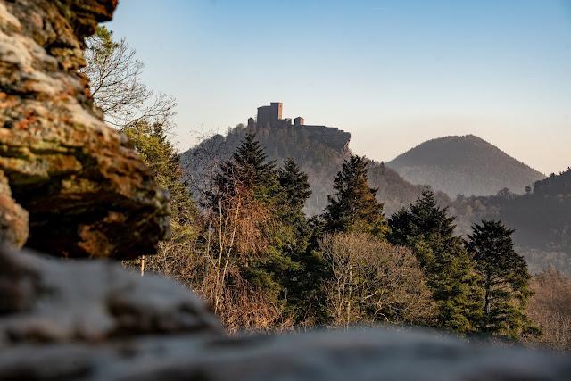 Richard-Löwenherz-Weg  Annweiler am Trifels  Wandern Südliche Weinstraße  Wanderung Pfälzerwald 01