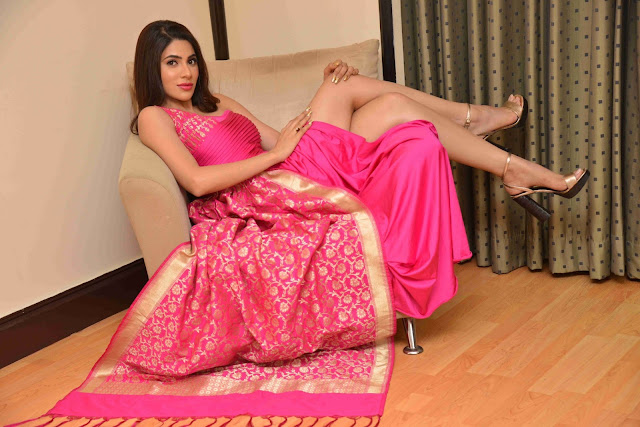 Nikki Tamboli in Silk saree gown dress | latest Indian saree styles 2019 Navel Queens