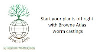 https://browneatlas.wixsite.com/home