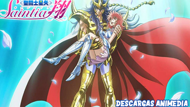https://descargasanimedia.blogspot.com/2020/09/saint-seiya-saintia-sho-010-audio.html