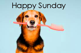 Funny%2BSunday%2BImages%2BHD%2B35