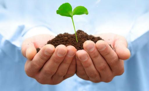 «Πράσινος Ιούνιος»: Πλήθος περιβαλλοντικών  δράσεων του Δήμου Ναυπλιέων και του ΔΟΠΠΑΤ