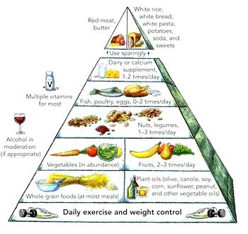 the pyramid of healthy food