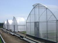 Ini Dia Pengertian, Kelebihan, Proses Pembuatan & Manfaat Lain Plastik UV