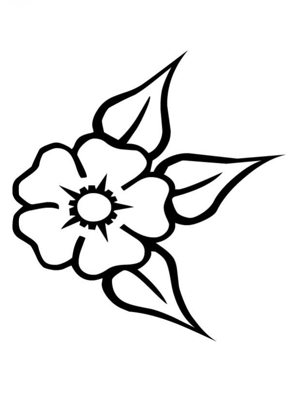 Pz C Dibujos De Flores