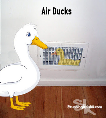 Air Ducks Attack Our Condo!