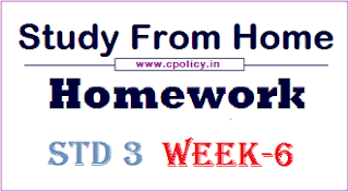 std 3 homework week 6