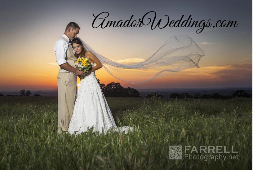 AmadorWeddings.com