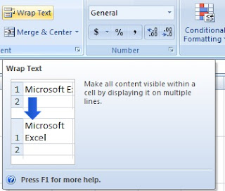 What is wrap text in excel in hindi