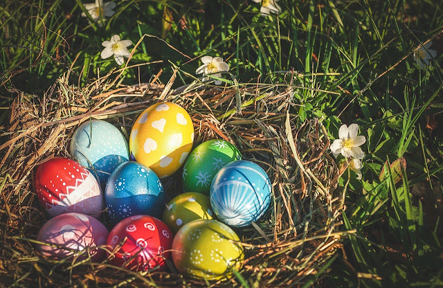 , Renkli Yumurta Satarak Para Kazanma