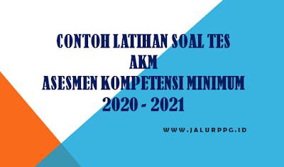 Contoh Latihan Soal Tes Akm Asesmen Kompetensi Minimum 2020 2021 Jalurppg Id