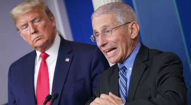 President Trump calls Dr. Fauci a 'bit of an alarmist' who 'made mistakes,' but says they have 'good relationship'