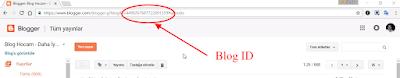 blogger blog id numarası