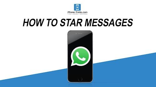 Cara Menggunakan Fitur Pin Chat dan Star Chat di WhatsApp