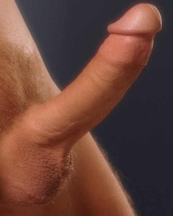 Pornhub Gay Perfect Dick And Body