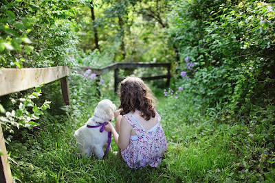 Trava i pas Panvet