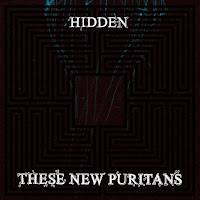 These New Puritans hidden chamber 2010 rock