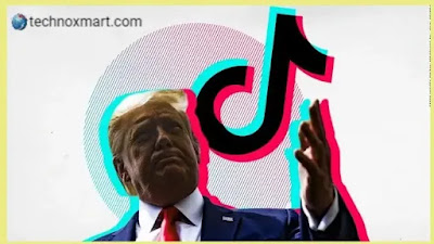 TikTok Poses One Another Challenge: First US Presidential Election