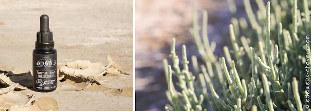 soin des cheveux au naturel serum du desert antonin b