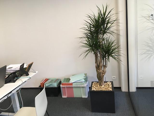 Plantenbakken kopen in hout in polyester in kunststof in pvc in cortenstaal in beton of in steigerhout