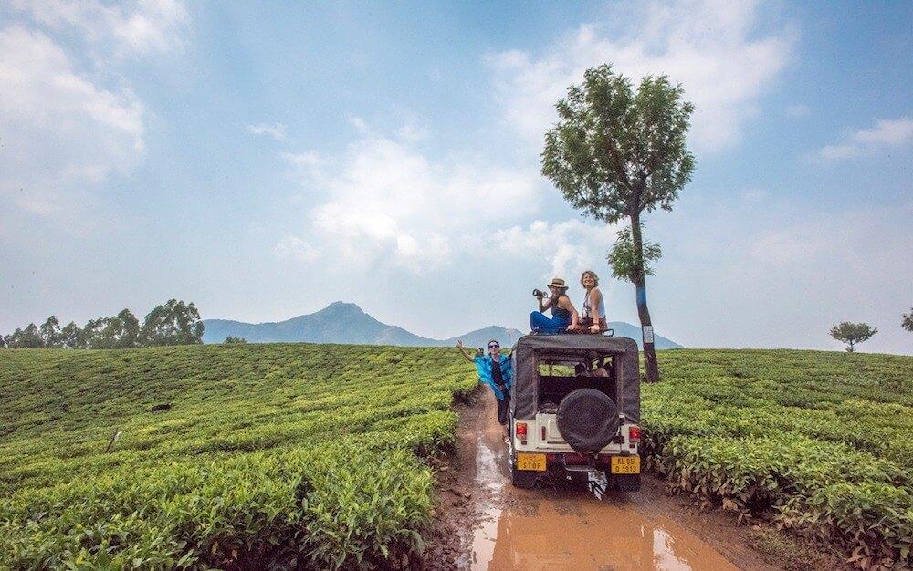 Экскурсия по чайным плантациям в Индии. Штат Керала