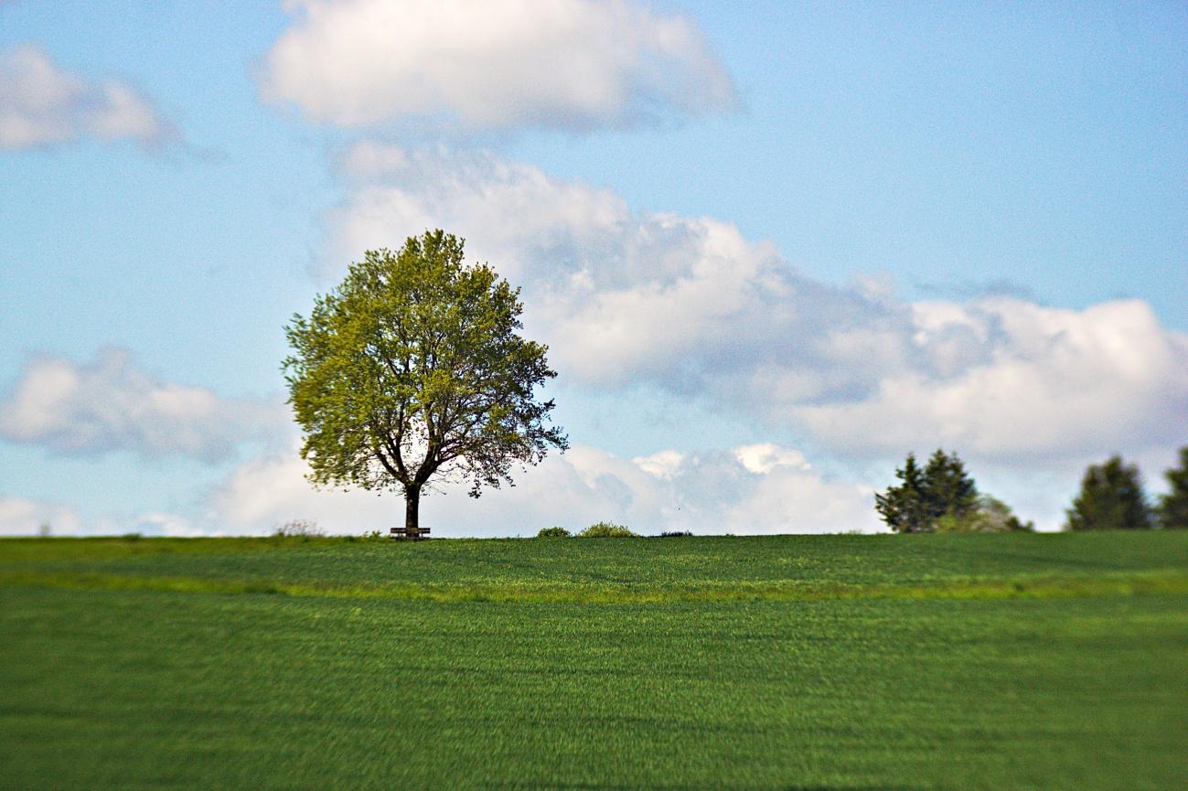 Zum Tagesabschluss — Grün, Blau, Weiß
