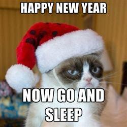 2017 Happy New Year Cat Memes