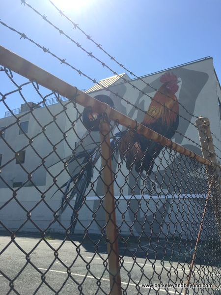 rooster mural by Dave Young Kim and Erik T. Burke at Jack London Square in Oakland, California