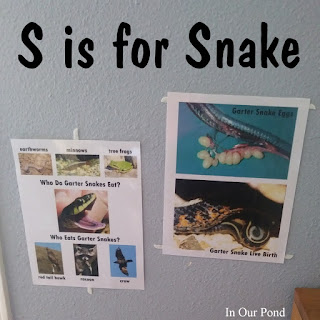 S is for Snake Homeschool Unit from In Our Pond