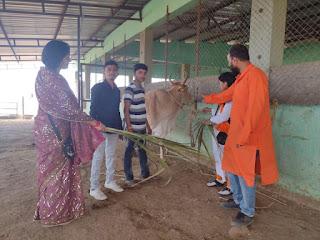 बुरहानपुर शहर में शीघ्र ही होगी गौ कथा: डॉ.किरण सिंह