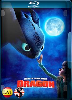 Cómo Entrenar a Tu Dragón (2010) REMUX 1080P LATINO/ESPAÑOL/INGLES