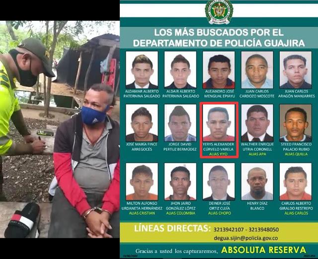hoyennoticia.com, En zona rural de Maicao cayó 'El Yiyo', peligroso sicario del cartel de los más buscados