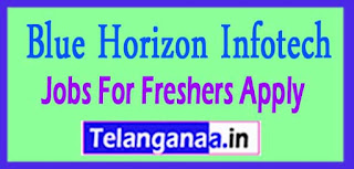 Blue Horizon Infotech Recruitment 2017 Jobs For Freshers Apply