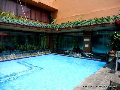 pool at BayView Park Hotel Manila