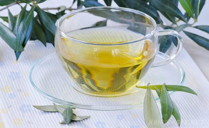 zeytin yaprağı neye faydalıdır, zeytin yaprağı çayı faydaları saraçoğlu, zeytin yaprağı çayı faydaları ekşi - www.kahvekafe.net