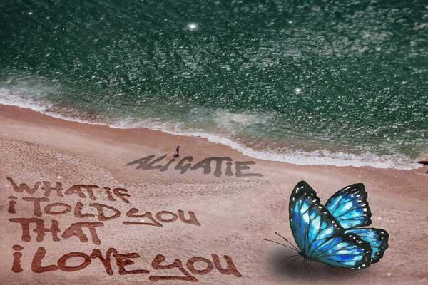 Lirik Lagu Ali Gatie What If I Told You That I Love You dan Terjemahan
