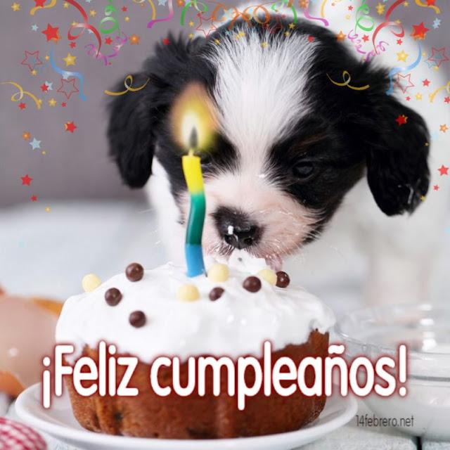 Tarjetas de feliz cumpleaños con perros