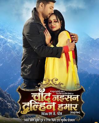 Gunjan Pant poster