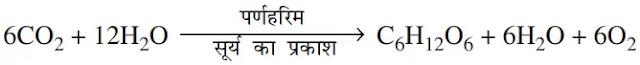 prakash-sanshleshan