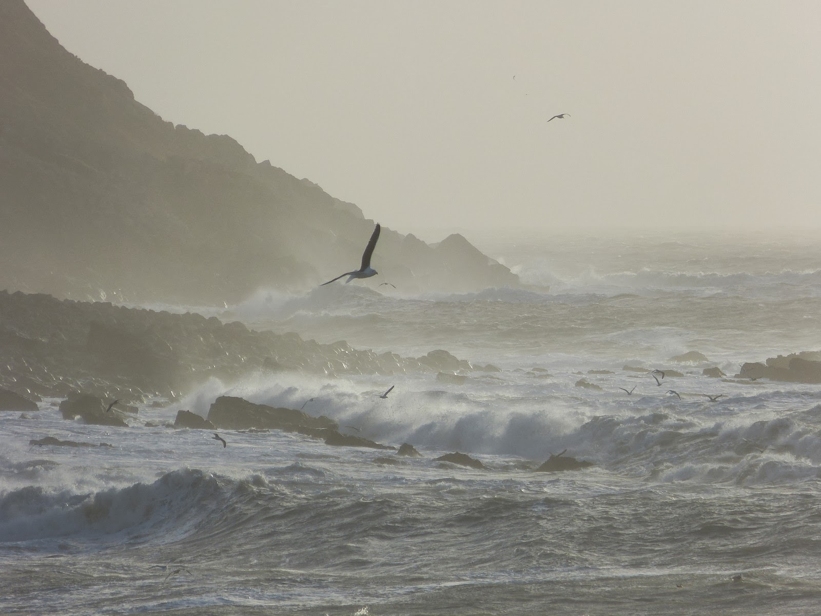A wild sea off Portland, January 2014
