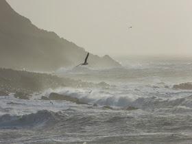 A wild sea off Portland, January 2014