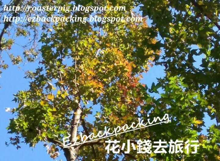 動植物公園看紅葉