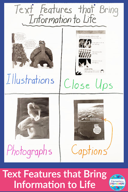 Organizing text features into categories with real examples allows students to see the purpose and better understand them when encountered in their own reading.