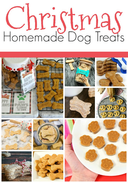 Christmas dog treat photos