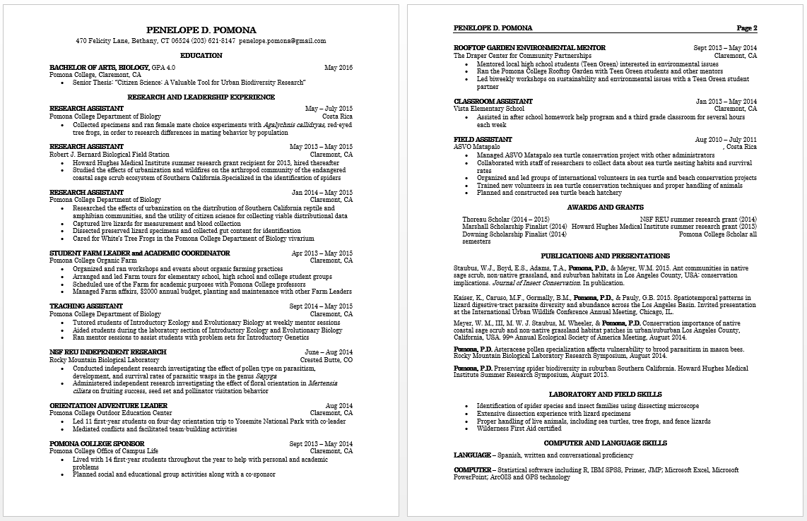 how to write curriculum vitae