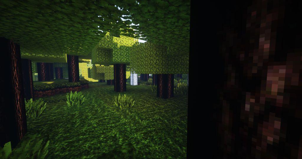Real-Life-Texture-Pack-screen-shots