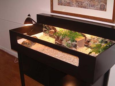 cara-menata-torto-table.jpg