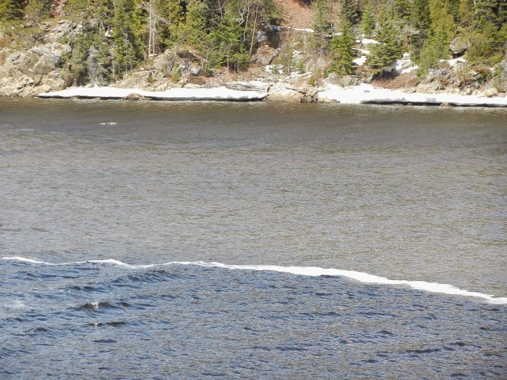 Fjord de Saguenay Québec Saint Laurent
