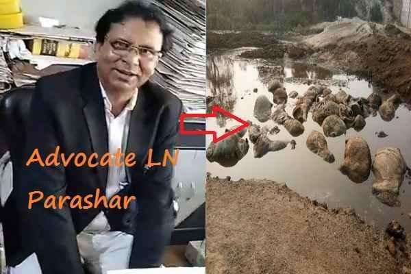 advocate-ln-parashar-demand-strict-action-chhanysa-village-gaushala